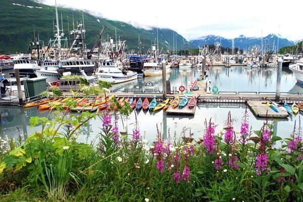 The Alaska Harbor by Valdez.