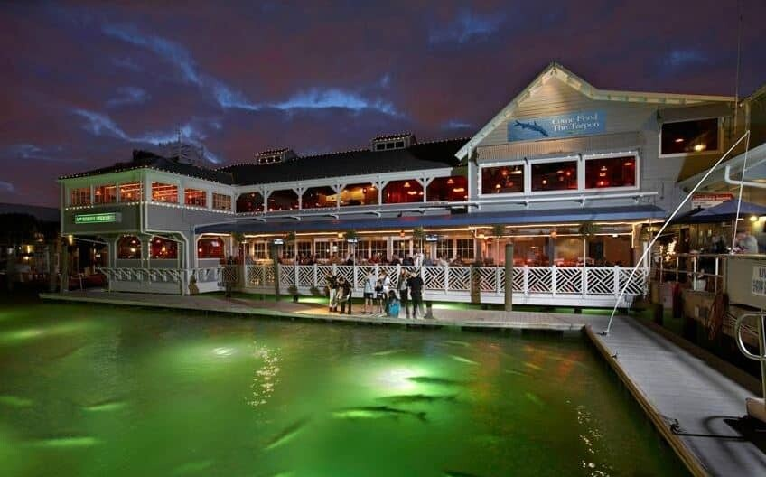 The night lights at 17sth Fisheries in Fort Lauderdale are famous for attracting large trouts and other fish.