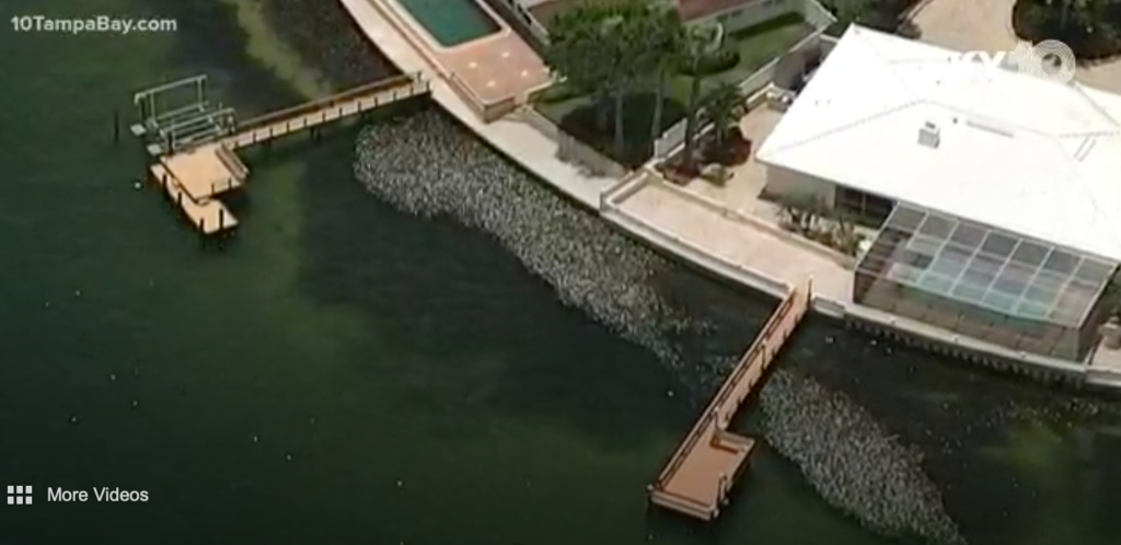 Dead fish from red tide accumulate at waterfront home properties in Southwest Florida.